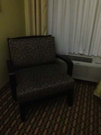 BEST WESTERN PLUS Brunswick Inn & Suites: Seating area in room