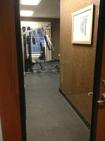 BEST WESTERN PLUS Brunswick Inn & Suites: Fitness area, again