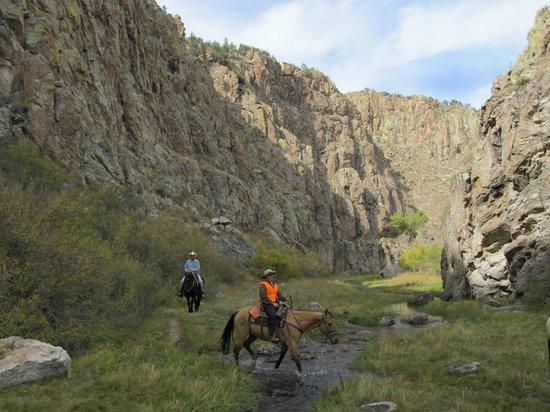 Geronimo Trail Guest Ranch: Taylor Creek Canyon