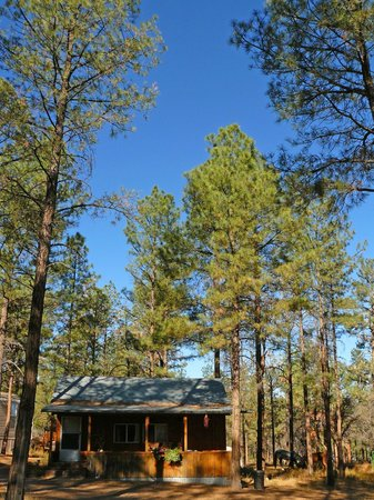 Geronimo Trail Guest Ranch: Our cabin, Apache
