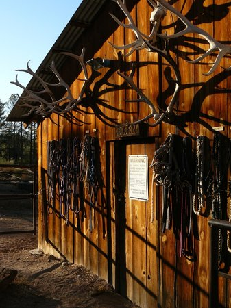 Geronimo Trail Guest Ranch: The barn