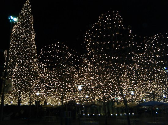 Sheraton Kansas City Hotel at Crown Center: Christmas at Crown center