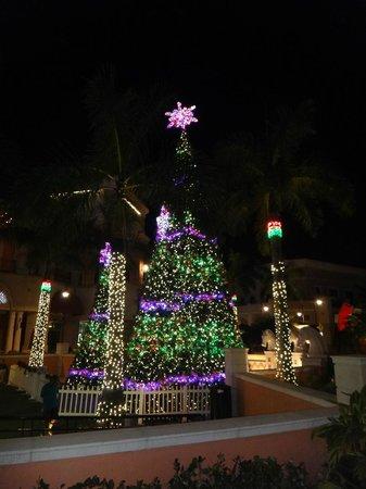 Gulfstream Park : Show de luzes e sons!