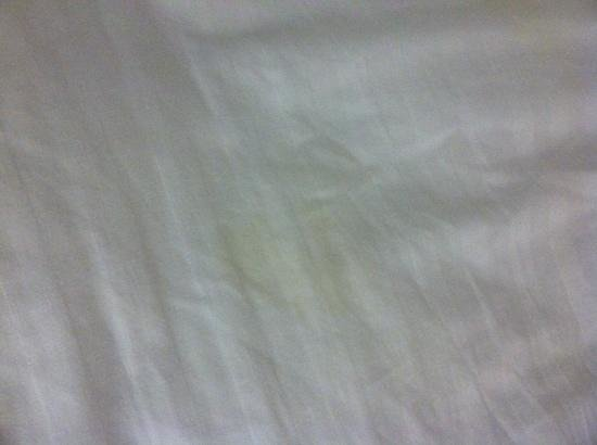 Holiday Inn Miami International Airport: urine stains from previous guests