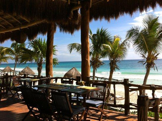 Las Ranitas Eco-boutique Hotel: Restaurant