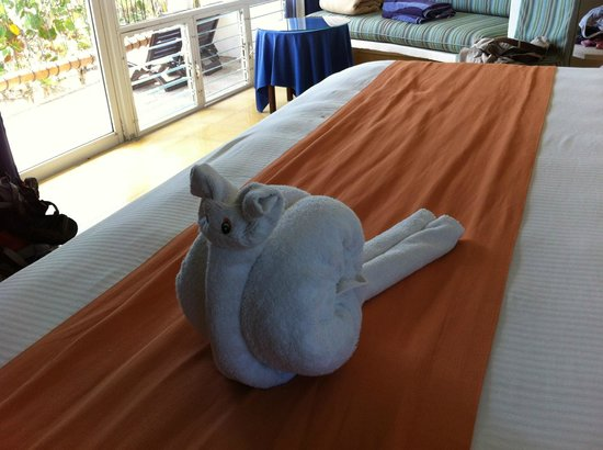 Las Ranitas Eco Boutique Hotel: They got so creative with the towels!