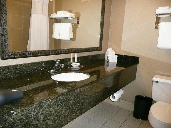 Crowne Plaza Denver Airport Convention Ctr: Nice big vanity area.