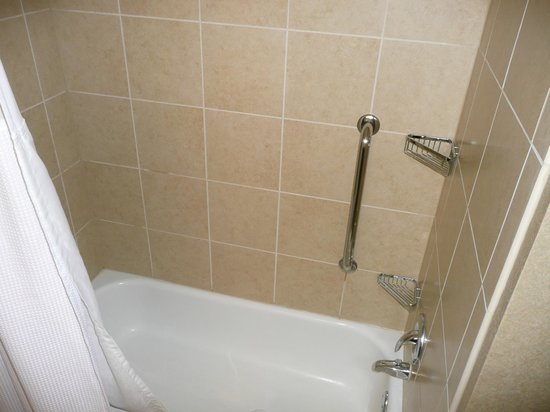 Crowne Plaza Denver Airport Convention Ctr: Clean shower.