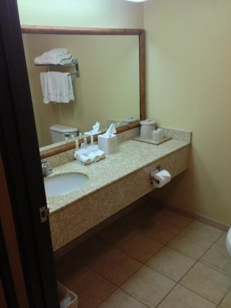 Holiday Inn Express Phoenix -I-10 West/Goodyear: bathroom