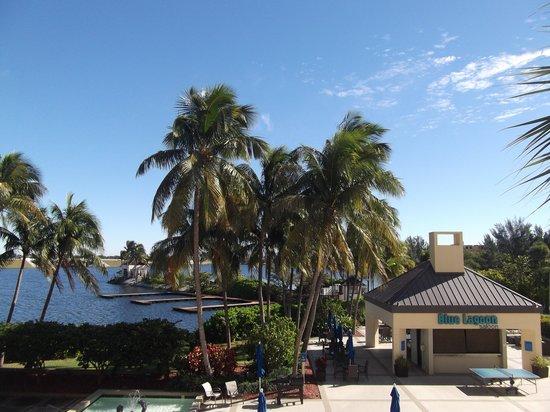 Hilton Miami Airport: area cerca de la piscina