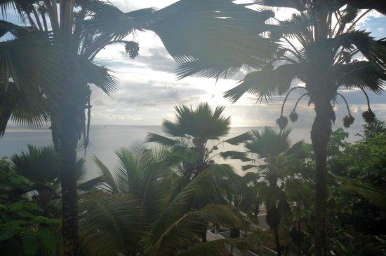 Windjammer Landing Villa Beach Resort: View from room
