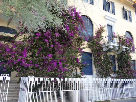 B & B La Bougainvillea : Entry- look for the flowers and the white gate