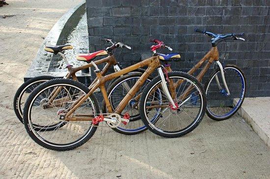 Astoria Bohol: Bamboo Bike