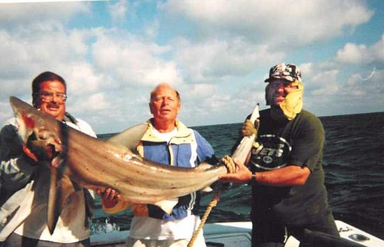 Dos Amigos Fishing Charters : Here is a shark we caught.