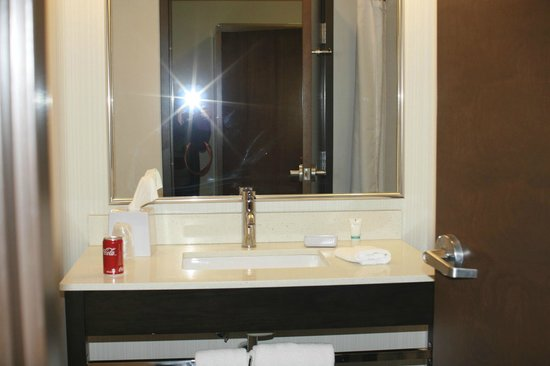 Four Points by Sheraton Edmonton Gateway : Bathroom vanity