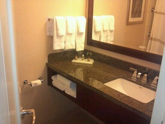 Atlanta Airport Marriott: Bathroom