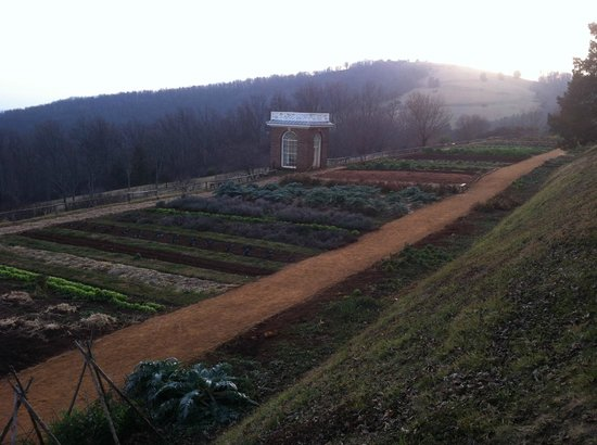 Thomas Jefferson'un Monticello'su: Vegetable gardens at sunset