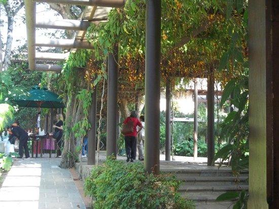 Casa Santo Domingo: sendero interno muy ecologico