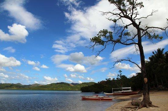Majika's Island Resort: MAJIKA'S BEACHFRONT