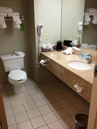 Hampton Inn Savannah - I-95/Richmond Hill: bathroom