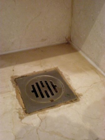 The Lalit New Delhi: Room 2325.  Smelly and rancid shower drain.