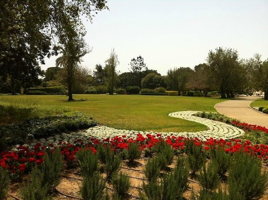 Last Minute Hotels in Zichron Yaakov