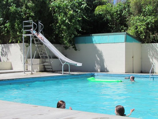 Opal Hot Springs And Holiday Park: Fantastic pools for adults and children!