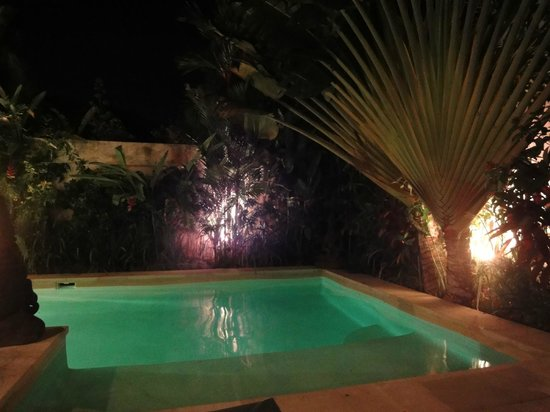 Dyana Villas: Pool and garden by nght