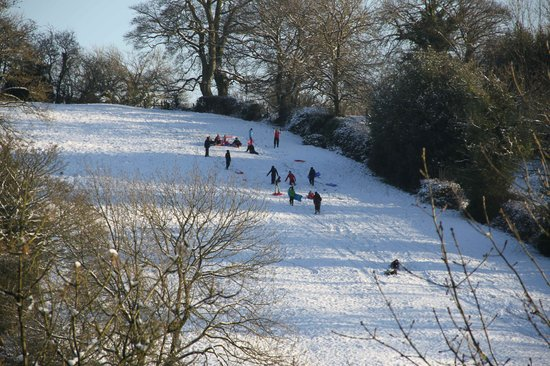 Tom's Barn and Douglas's Barn: Fun on the Parwich slopes!
