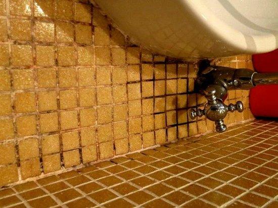 Carpe Diem Hotel Restaurant: Black mold on bathroom tiles