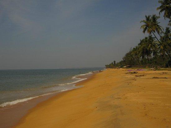 Sai Vishram Byndoor: beach