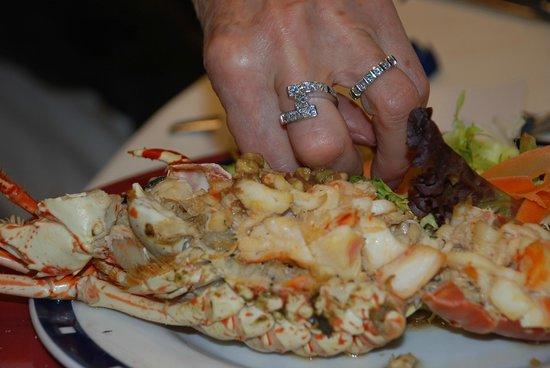 TRYP Port Cambrils: Langouste a la vinaigrette pour le dîner du Réveillon 2012