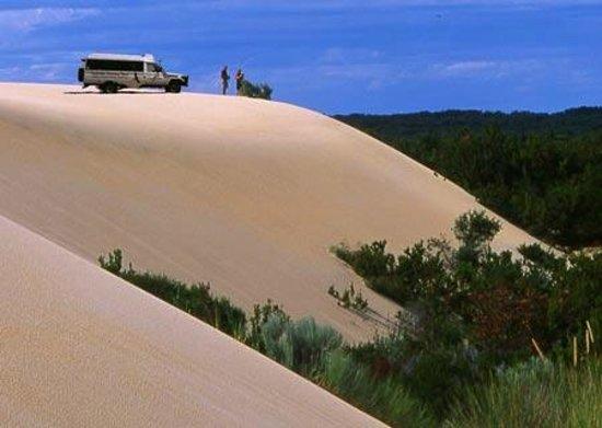 Pemberton Australia  city pictures gallery : Pemberton Discovery Tours Australia : Top Tips Before You Go ...