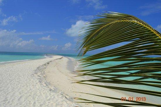 Kuramathi Island Resort: Песчаная коса
