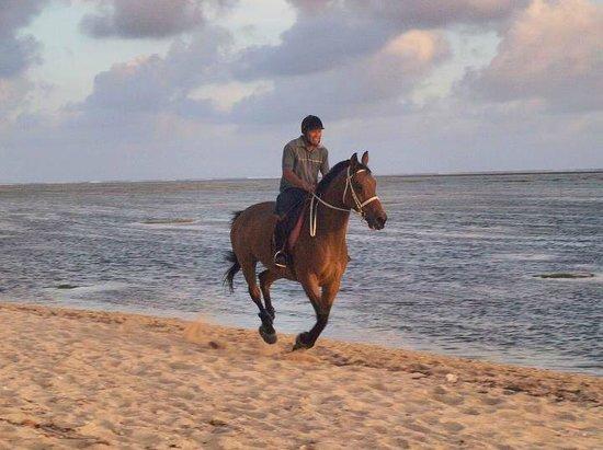 Centre Equestre De Riambel: Galopping on the beach