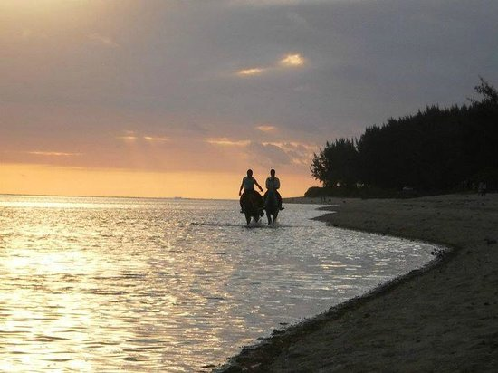 Centre Equestre De Riambel: Riding together ...