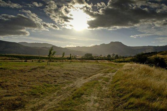 Landscape - Guinevere Guest Farm: 12