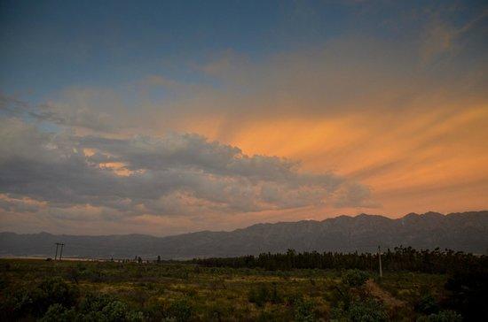 Landscape - Guinevere Guest Farm: 11
