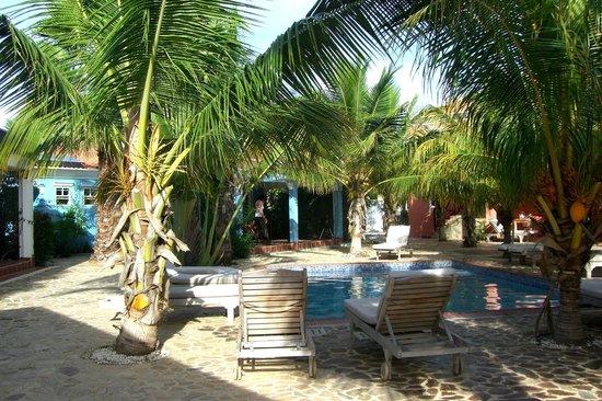 Perla Boneriano: uitzicht op de tuin en het zwembad