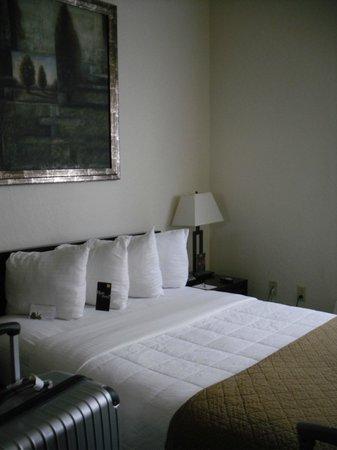 Hotel Fusion: mini-camera