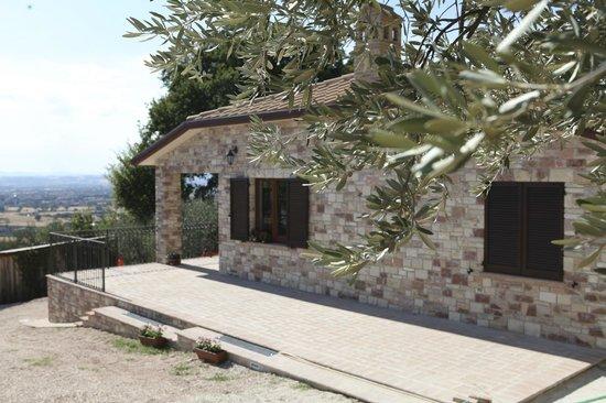 B&B Lavanda e Rosmarino Assisi
