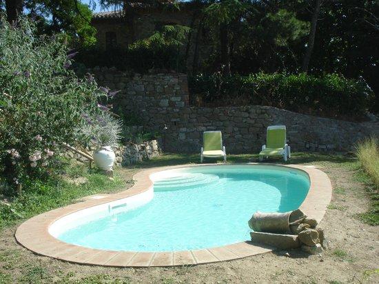 Villa Mina: piscina