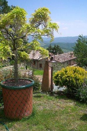 Villa Mina: giardino