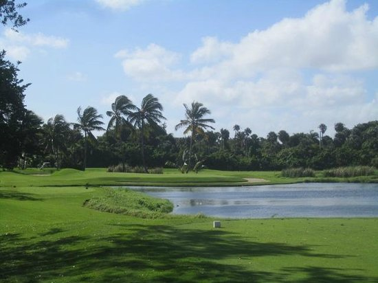 Barcelo Bavaro Palace: golf course