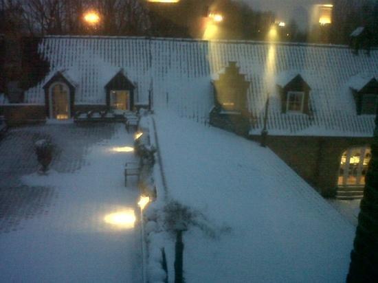 Salons Waerboom: Vista dalla finestra....sorpresa della mattina...