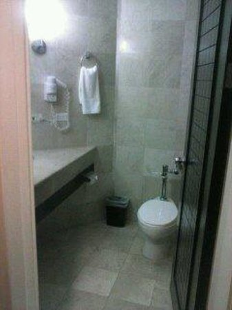 Crown Regency Hotel & Towers: Bathroom