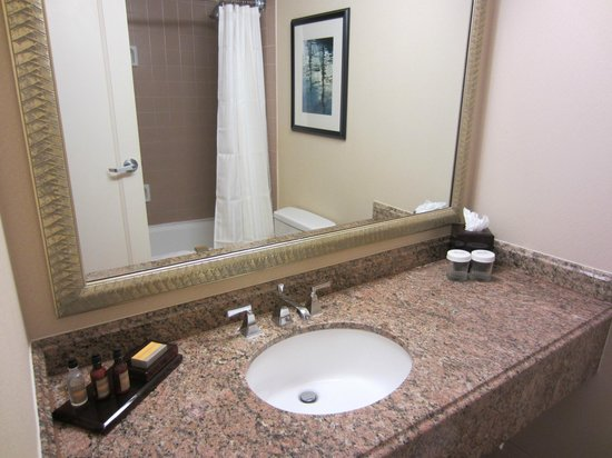 Marriott Anaheim: Bathroom