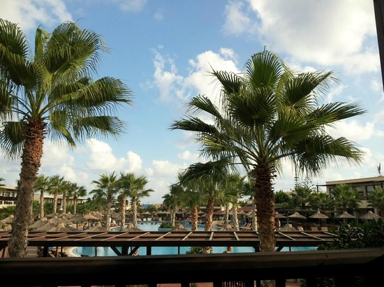 Stella Palace Resort & Spa: Warm warm weather and palms. Who saide Crete was dry and dusty????