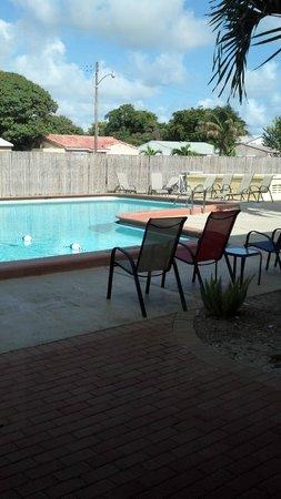 Hollywood Gateway Inn: pool area