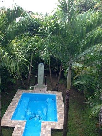 Hotel Orchidee: pool